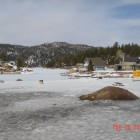 Big_Bear_Feb_2010_065